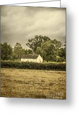Barn In Corn Field Greeting Card