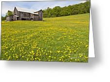 Barn In Dandelion Field Greeting Card