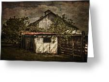 Barn In Morning Light Greeting Card