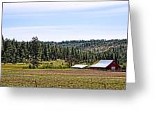 Barn In The Trees Greeting Card
