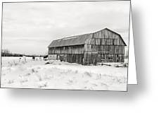 Barn Quebec Province In  Black And White Greeting Card