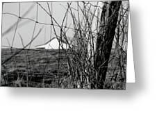 Barn Through Fence Greeting Card