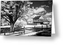 Barn Yard Greeting Card