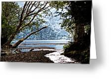 Barnes Creek At Lake Crescent - Washington Greeting Card