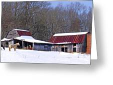 Barns And Horses In Winter Greeting Card