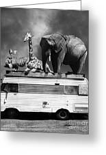 Barnum And Bailey Goes On A Road Trip 5d22705 Vertical Black And White Greeting Card