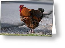 Barnyard Rooster Greeting Card