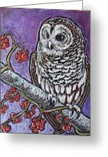 Barred Owl And Berries Greeting Card