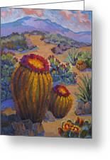 Barrel Cactus In Warm Light Greeting Card