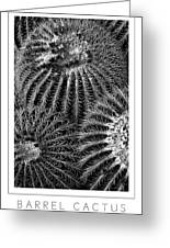 Barrel Cactus Poster Greeting Card
