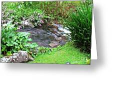 Barriles Small Stream Greeting Card