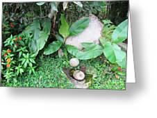 Barriles Stone Work Greeting Card