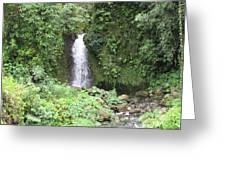 Barriles Waterfall Greeting Card