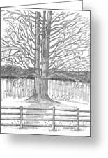 Barrytown Tree Greeting Card
