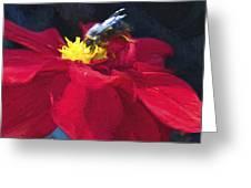 Bartram Bee Greeting Card