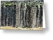 Basalt Columns Greeting Card