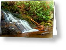 Base Of Laurel Falls Greeting Card