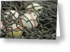 Baseballs And Net Greeting Card