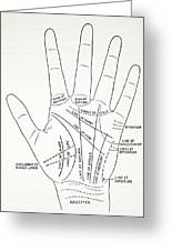 Basic Lines And Lesser Lines Of The Hand Greeting Card
