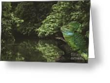 Basilisk Lizard Greeting Card