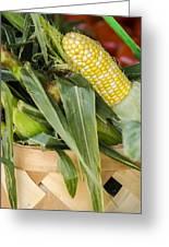 Basket Farmers Market Corn Greeting Card
