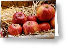 Basket Of Delicious Red Apples Greeting Card