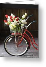 Basket Of Tulips Greeting Card