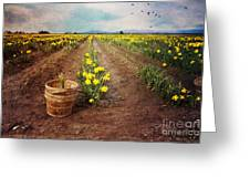 basket with Daffodils Greeting Card