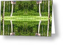 Basketball Forest Court Reflection 1 Greeting Card