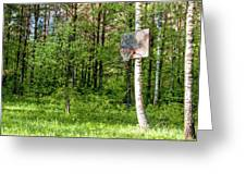 Basketball Forest Court Greeting Card