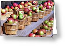 Baskets Of Apples Greeting Card by Janice Drew