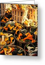 Baskets Of Gourds Greeting Card