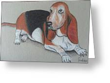Bassett Puppy Greeting Card by Steve Jorde