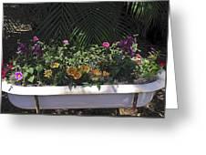 Bath Tub Flowers Greeting Card