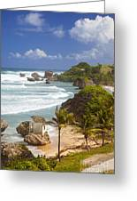 Bathsheba Beach Greeting Card