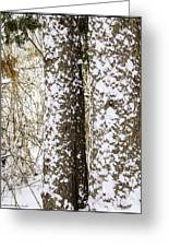 Battered By Winter Blizzard Greeting Card