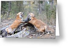 Battle For Dominance Greeting Card