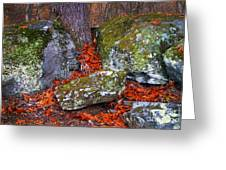 Battlefield In Fall Colors Greeting Card