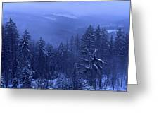 Bavarian Forest In Winter Greeting Card by Ulrich Kunst And Bettina Scheidulin