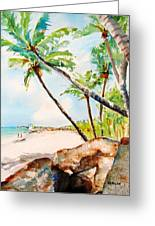 Bavaro Tropical Sandy Beach Greeting Card
