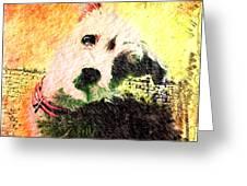 Baxter Greeting Card