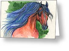 Bay Arabian Horse With Blue Mane 30 10 2013 Greeting Card