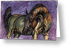 Bay Horse On The Purple Background Greeting Card