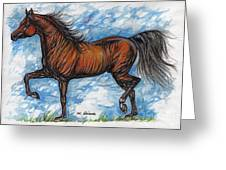 Bay Horse Running Greeting Card