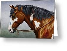 Bay Native American War Horse Greeting Card