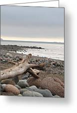 Bay Of Fundy Greeting Card