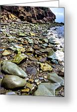 Bay Of Fundy Shoreline Greeting Card