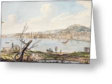 Bay Of Naples From Sea Shore Greeting Card