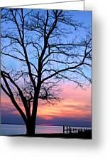 Bay Sunset Greeting Card