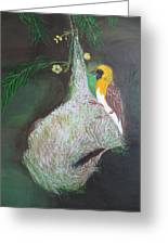Baya Weaver At Nest Greeting Card